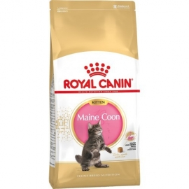 ROYAL CANIN FHN Maine Coon Kitten kassitoit 10kg