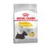 Royal Canin Mini Dermacomfort 3kg koeratoit