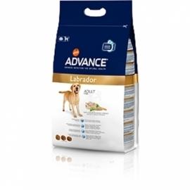 Advance koeratoit Labrador Retriver 12kg