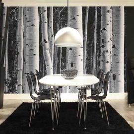 Söögilauakomplekt BELINA 6-tooliga