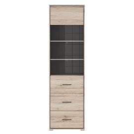 Vitriinkapp RONSE tamm / hall, 56x40,5x197 cm