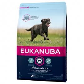 Eukanuba Large breeds koeratoit 15kg