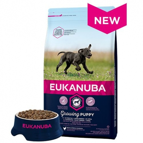 Eukanuba Puppy suurtele tõugudele 15kg